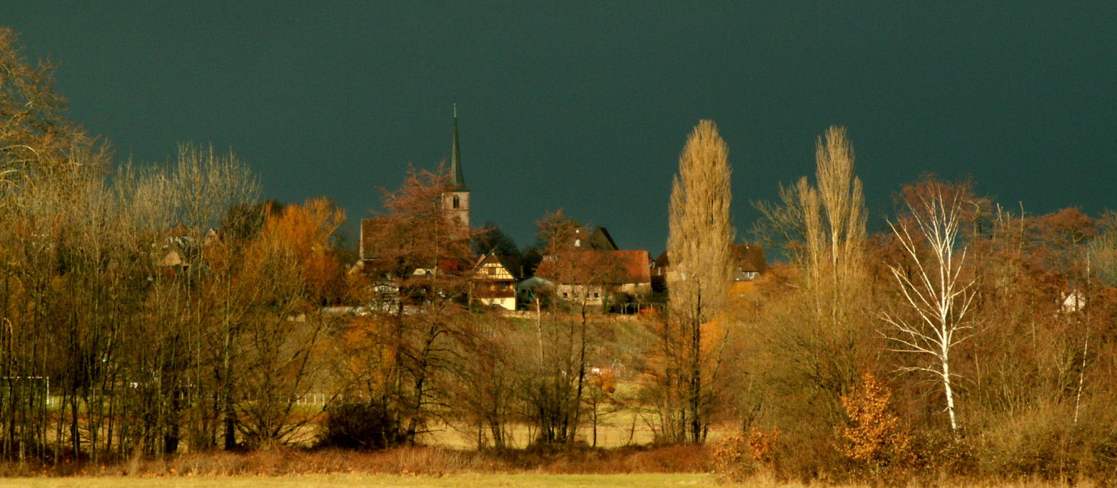Alsace