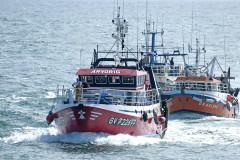 Le retour de pêche au port du Guilvinec