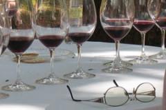 Dégustation de vins et d'alcools millésimés dans une cave parisienne