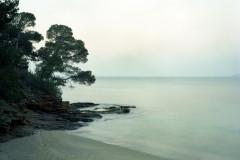Domaine du Rayol - Explorer le jardin marin