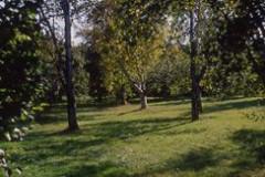 Arboretum de l'Ecole Du Breuil