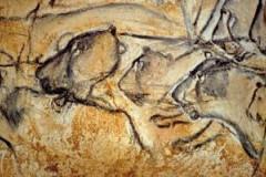 La grotte ornée de Vallon-Pont-d'Arc (dite Grotte Chauvet)