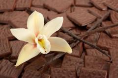 Tout sur le chocolat, son histoire et sa fabrication