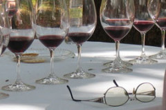 Apprendre les vins de Bourgogne