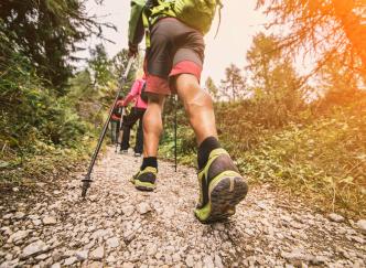 Votre prochaine randonnée à travers le Massif des Vosges