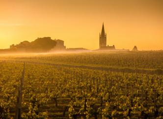 Une journée idéale autour de Bordeaux