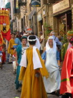 Fêtes médiévales du Grand Fauconnier