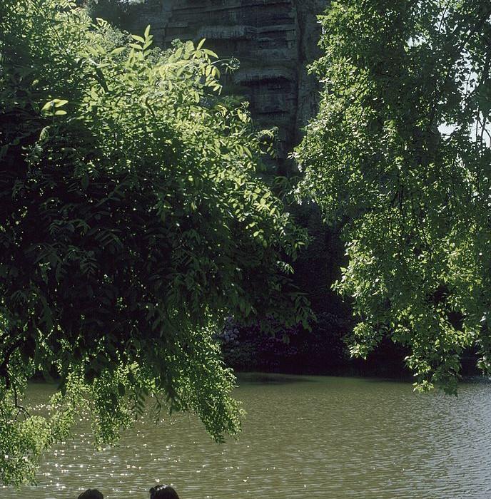 9 grands parcs parisiens restent ouverts 24h/24 cet été
