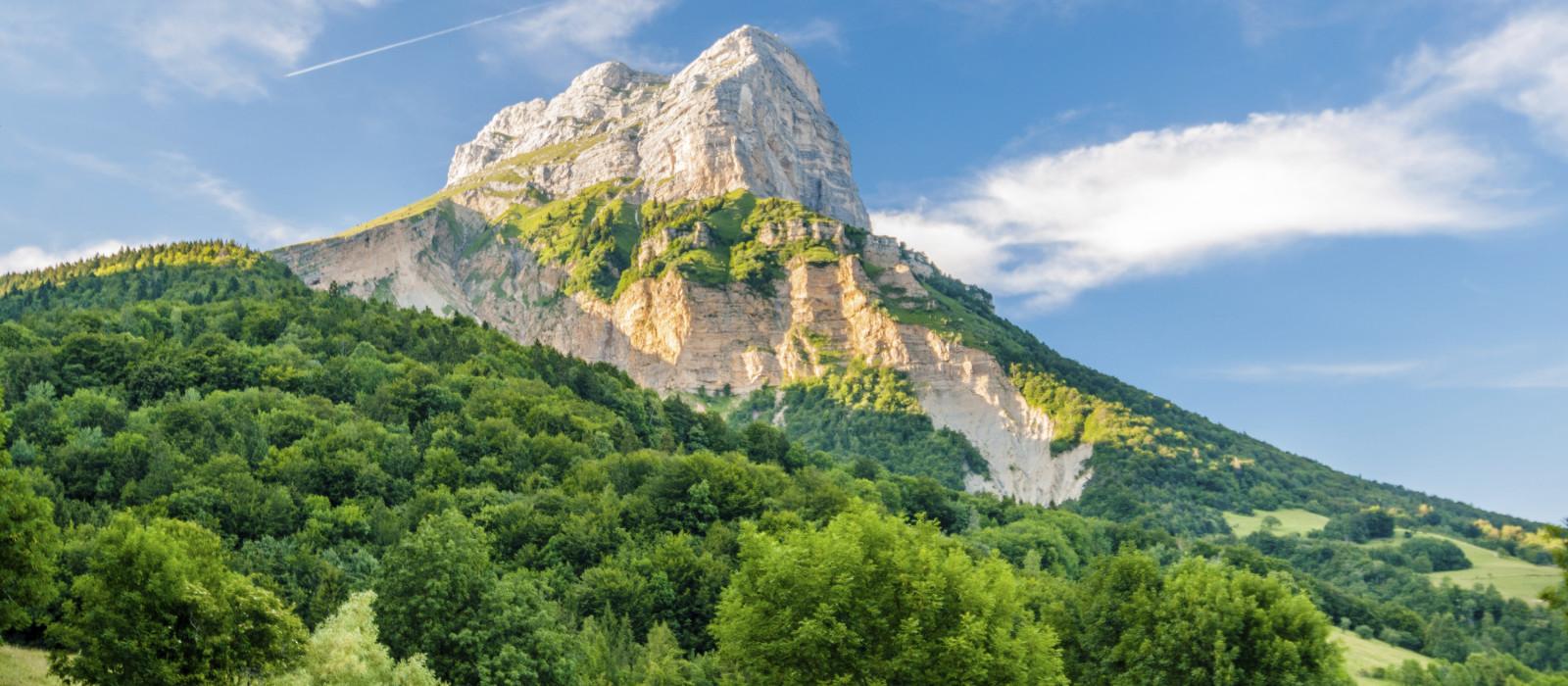 Promenade dans l'une des plus belles forêts de France