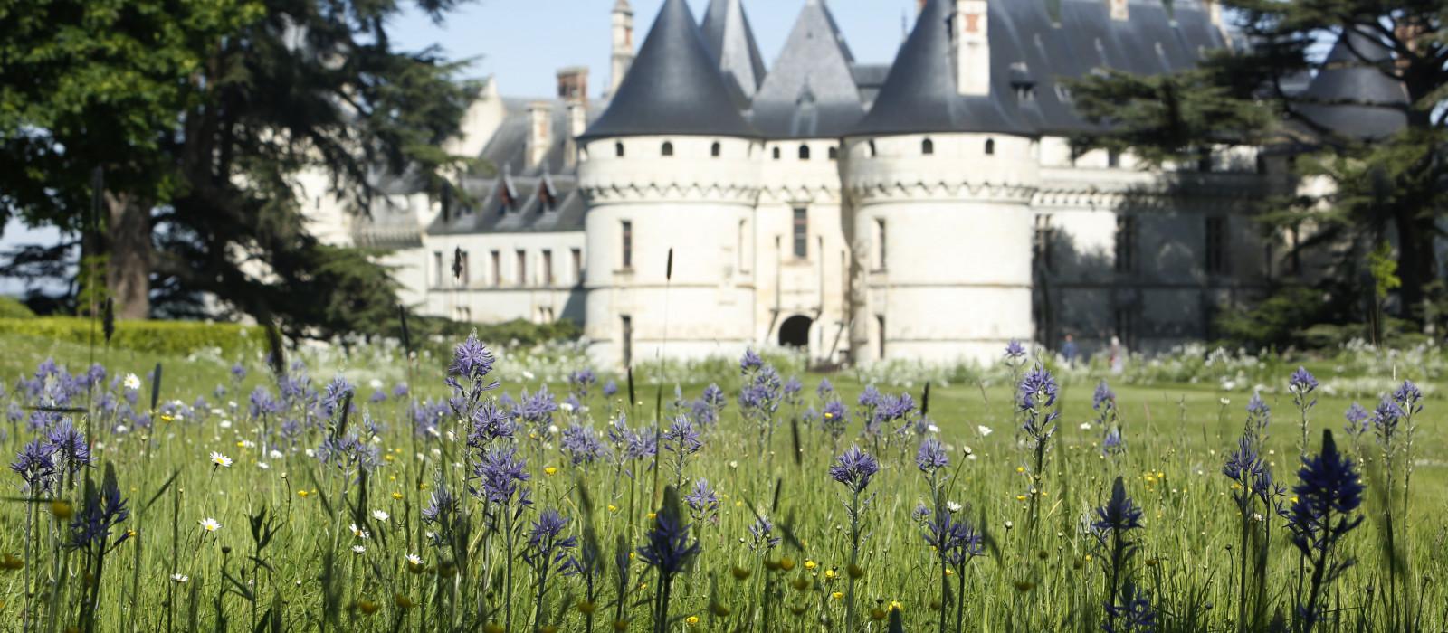 Sur la Loire, explorons Chaumont !