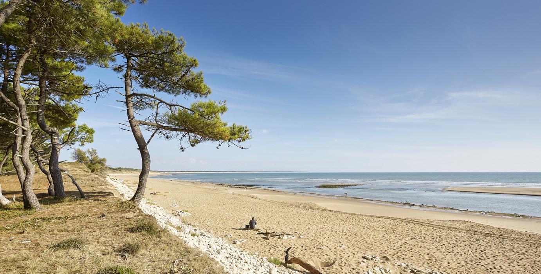 Visiter l 39 aiguillon sur mer la tranche sur mer - Office de tourisme de l aiguillon sur mer ...