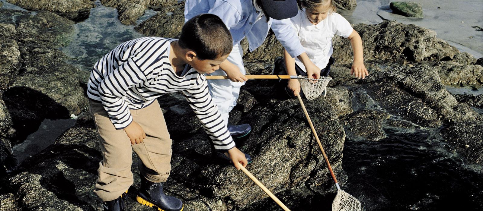 Dinard : une escapade à marée basse