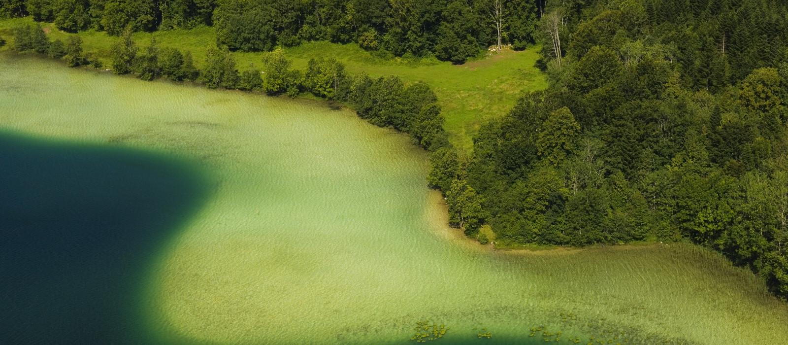 Clairvaux-les-Lacs