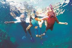 Balade sous-marine à Port d'Alon