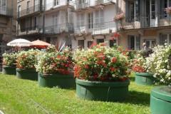 Appartement 2 rue des Sybilles