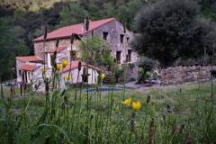 Mas de la Fargassa - Gîtes et camping dans une ferme bio