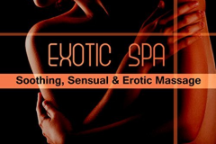 The Vip Spa Massage  Geneve