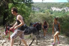 Randonnée avec un âne à Vénasque
