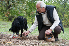 Visite d'une Truffière