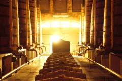 Visite d'une maison de Négoce - Les étapes du Cognac
