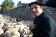 FOIRE AGRICOLE D'AUTOMNE