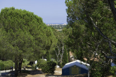Le Parc des Bormes