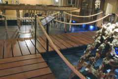 Musée de l'Étang de Thau