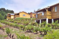 Village Vacances Ambialet Le Hameau des Vignes