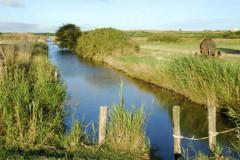 La réserve naturelle du marais d'Yves