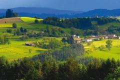 Parc naturel régional Livradois Forez