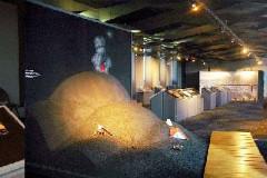 Muséum des Volcans