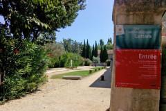 SITE ARCHÉOLOGIQUE LATTARA - MUSÉE HENRI PRADES DE MONTPELLIER MÉDITERRANÉE MÉTROPOLE