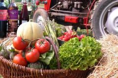 Découvrez une ferme en libre cueillette