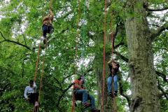 Conquête des arbres au Domaine de Dampierre