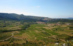 Les vignerons de Tautavel-Vingrau