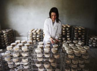 La Corse en 5 spécialités culinaires