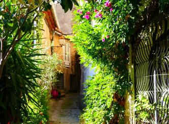 10 bonnes raisons d'aller à Grimaud
