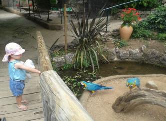 Parc animalier et exotique ZOA