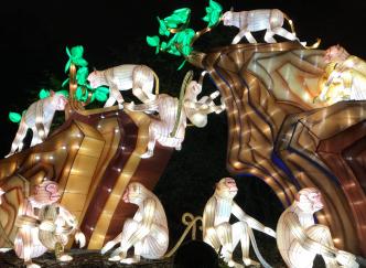 Espèces en voie d'illumination: un festival de lumières en plein Paris