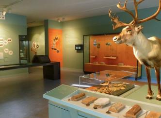 Cité de la préhistoire