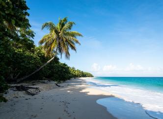 Guadeloupe : 5 spots à couper le souffle !