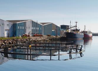 Saint-Pierre et Miquelon : une île de toute beauté