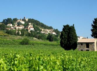 Randonnée sur le sentier viticole de Rasteau