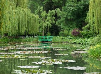Un peu de repos dans les jardins aquatiques entre Dombes et Beaujolais