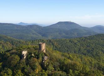 Les plus belles forêts françaises