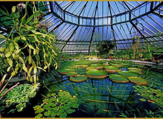 Jardin botanique de l'université de Strasbourg