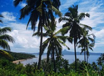 Mayotte: l'île hippocampe au cœur de l'Océan Indien