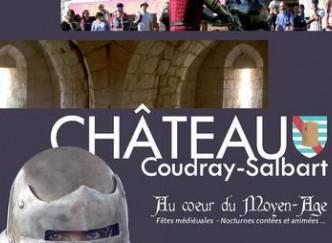 Le Château du Coudray-Salbart