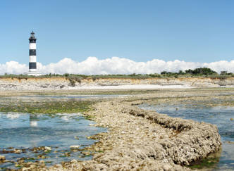 Escale sur les Îles de Charente-Maritime
