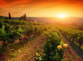 Le tourisme solidaire en France